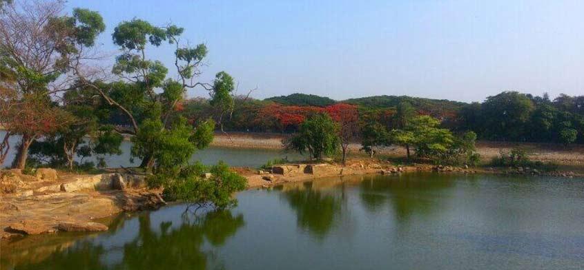 Karnataka Et Kerala 14 Jours Inde Du Sud Gets Holidays